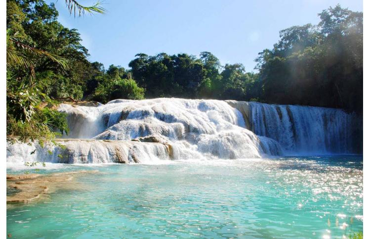 PLQ-Tour Zona Arqueologica de Palenque, Cascada de Misolhá y Cascadas de Agua Azul- SCL